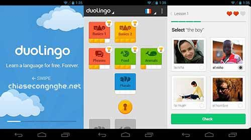 Doulingo Plus cho Android